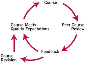 QM Course Review Process