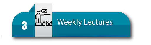3. Weekly Lectures